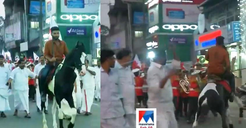 kerala-yathra-horse