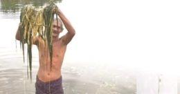 പ്രളയം: കുട്ടനാട്ടിൽ കൃഷി, കന്നുകാലി മേഖലയിൽ 1540 കോടിയുടെ നഷ്ടം