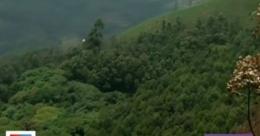 മരം മുറിക്കല് ഭേദഗതി ഉത്തരവിനെതിരെ പ്രതിഷേധം