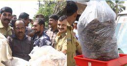 തളിപ്പറമ്പില് ആറു കിലോ കഞ്ചാവുമായി രണ്ടുപേര് പിടിയിൽ