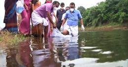 പീച്ചി ഡാമിൽ മത്സ്യകൃഷി; സർക്കാർ പദ്ധതിയുടെ ഭാഗം
