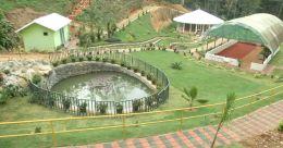 അജൈവ മാലിന്യങ്ങൾ ഉപയോഗ യോഗ്യമാക്കി; മാതൃകയായി സർക്കാർ പച്ചക്കറിത്തോട്ടം