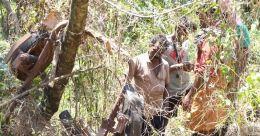 കാട്ടുപന്നിയുടെ ആക്രമണം; ഭിന്നശേഷിക്കാരന് ഗുരുതര പരിക്ക്