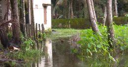 തിരുവല്ലയിൽ വെള്ളക്കെട്ടില് 35 കുടുബങ്ങള്; പകർച്ചവ്യാധി ഭീഷണി