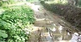 തകർന്നടിഞ്ഞ് നെടുമുടി റോഡ്; പ്രതിഷേധവുമായി നാട്ടുകാർ