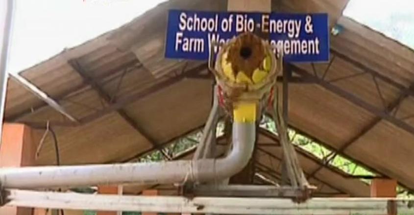 bio-energy