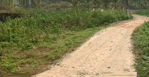 പട്ടയം കിട്ടി വർഷങ്ങളായിട്ടും വീടുവയ്ക്കാനാവാതെ 16 കുടുംബങ്ങൾ