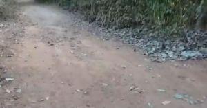 സഞ്ചരിക്കാന് നല്ല റോഡില്ല; ദുരിതത്തിൽ നാട്ടുകാർ