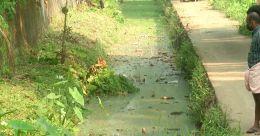 മുണ്ടകന് തോട് പഴയ പ്രതാപത്തിലേക്ക്; കോഴിക്കോട്ട് നവീകരണ പദ്ധതി