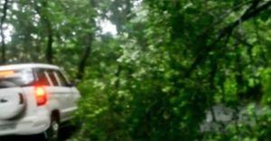 മൂഴിയാര് ഗവി റൂട്ടില് ഗതാഗതം മുടങ്ങിയിട്ട് നടപടിയെടുക്കാതെ അധികൃതര്
