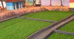 ഹോർട്ടികൾച്ചർ മിഷന്റെ പ്രദർശനം; ടിഷ്യുകൾച്ചറിൽ വികസിപ്പിച്ചെടുത്ത തൈകൾ
