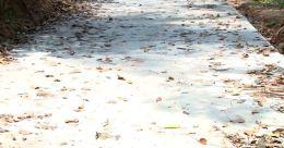 ഒരു മാസം മുന്പ് കോണ്ക്രീറ്റ് ചെയ്ത മാരൂർ - പുത്തൻവിള റോഡ് പൊളിഞ്ഞു