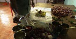 നിലയ്ക്കാത്ത സഹായം; കൈ നിറഞ്ഞൊഴുകി ജില്ലാ സ്പോർട്സ് കൗൺസിൽ