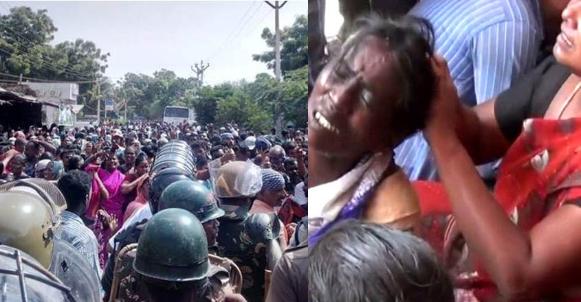 chennai-thousands-of-people-gathered-in-tamil-nadu