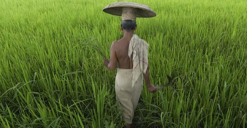 chingam-farmer