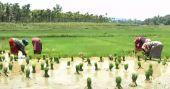 പത്ത് വർഷം; എഴുതിതള്ളിയത് 4.7 ലക്ഷം കോടിയുടെ കാർഷിക വായ്പ