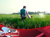 Choondu Viral