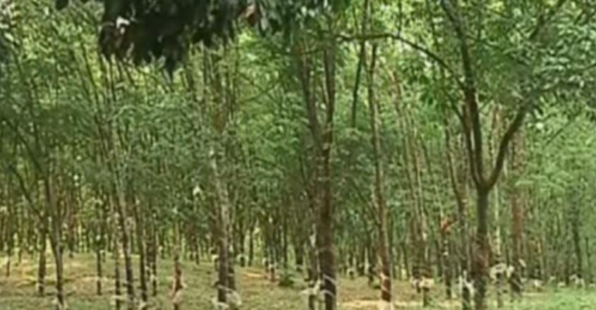 karnataka-farmersv