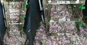 ഇൗ ചിത്രം സത്യമാണ്; എസ്ബിഎെ എടിഎമ്മില് എലികള് കരണ്ടത് 12 ലക്ഷം