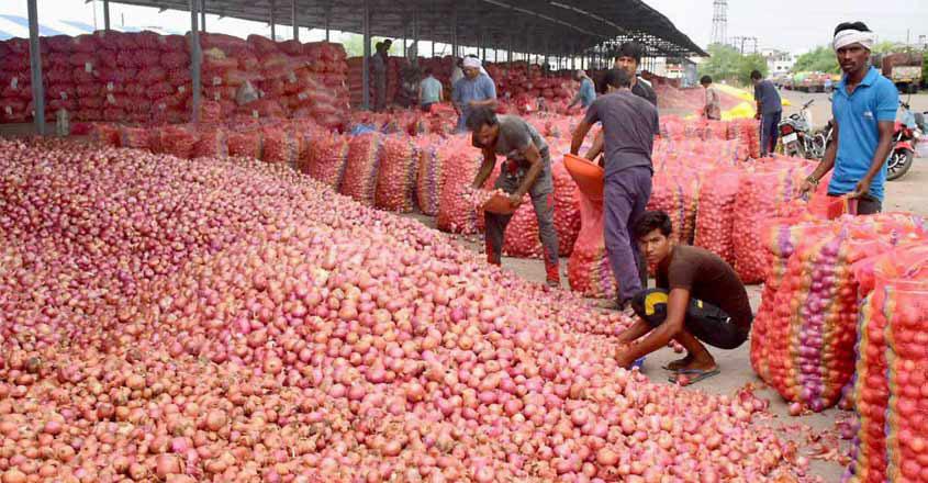 onion-farmer-save