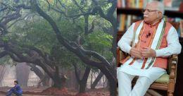 'സീനിയർ' മരങ്ങൾക്ക് പെൻഷൻ നൽകി സർക്കാർ; പ്രതിവർഷം 2500 രൂപ
