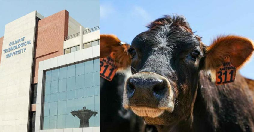 cow-gujarat-university