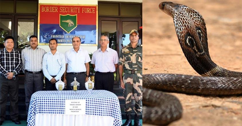 bsf-snake-post