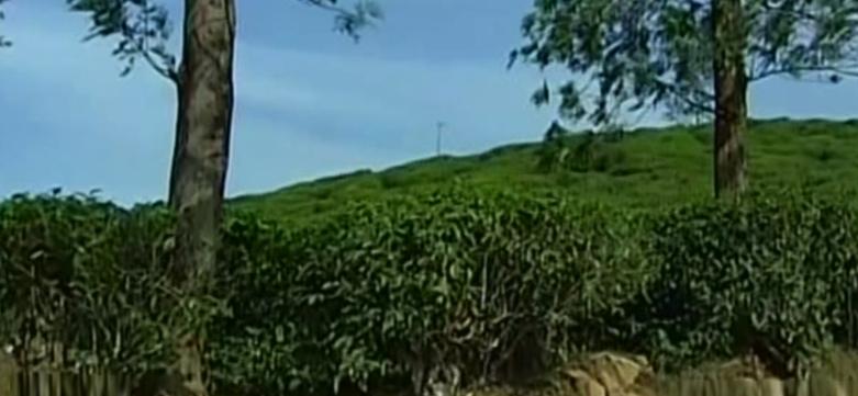 land-encroachment