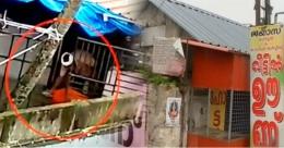 തോരാമഴയിൽ മലിന ജലത്തിലെ പാത്രം കഴുകൽ വൈറൽ; ആലപ്പുഴയിലെ ഹോട്ടലിന് പൂട്ട്