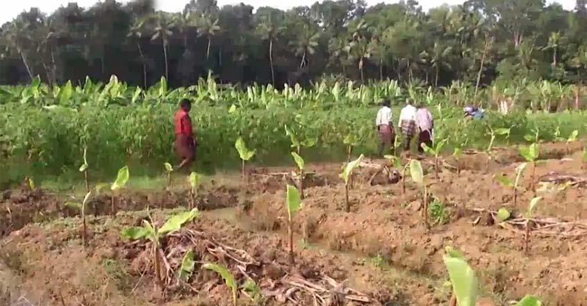 chenkal-farmers