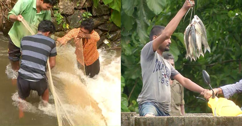pathanamthitta-fishing