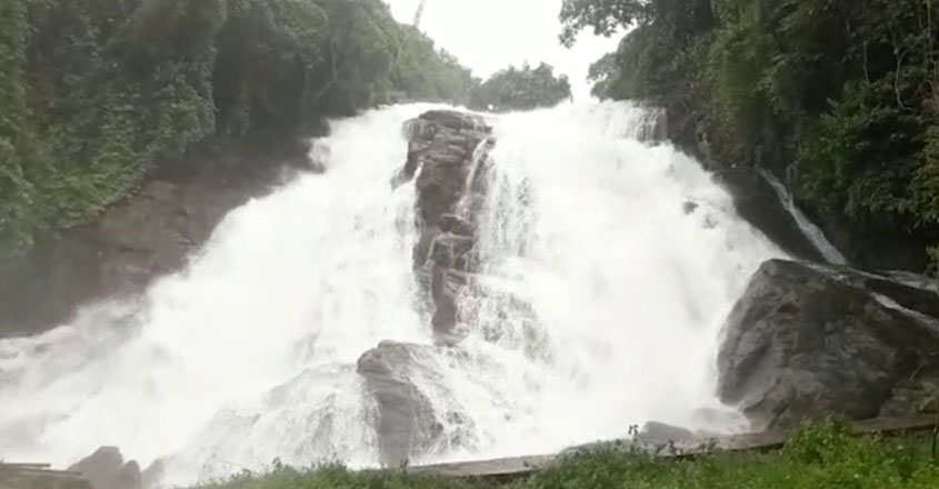 athirappilly-web