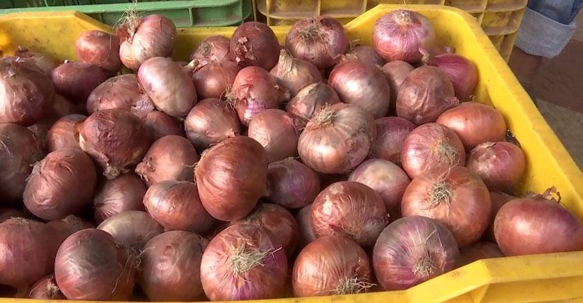 onion-wb