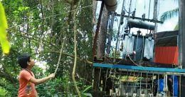 ഒരു പതിറ്റാണ്ട് നാട്ടിൽ ഭീതി വിതച്ച് 110 കെവി ലൈൻ; കുലുങ്ങാതെ കെഎസ്ഇബി