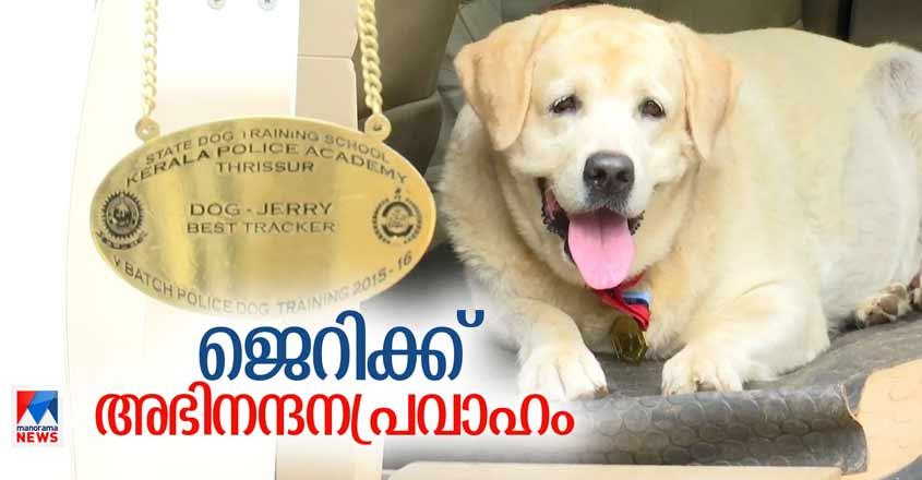 Specials-HD-Thumb-Jerry-Dog