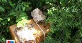 അനധികൃതമായി സൂക്ഷിച്ച സ്ഫോടകവസ്തുക്കൾ പിടികൂടി