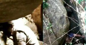 കുന്നിൻ മുകളിലെ ആളില്ലാ ഗുഹയിൽ വിശാലമായ വ്യാജവാറ്റ്; അറസ്റ്റ്