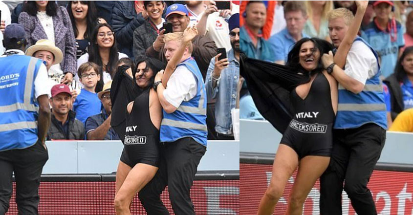 cricket-fan