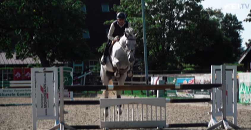 equestrianmirza