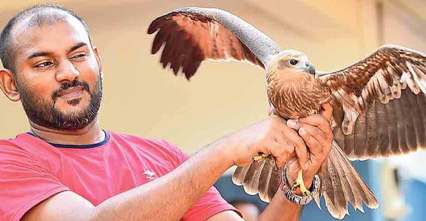 aabid-eagle