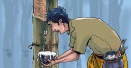 തണുപ്പകറ്റാൻ ഇതരസംസ്ഥാന തൊഴിലാളി തീയിട്ടത് 10 സെന്റ് റബർ തോട്ടം