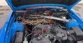 കാറിന്റെ ബോണറ്റിനുള്ളിൽ കൂറ്റൻ പെരുമ്പാമ്പ്; 10 അടിയോളം നീളം; വിഡിയോ