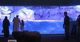 മുപ്പതിനായിരത്തിലധികം കടൽ ജീവികളും മത്സ്യങ്ങളും നിറഞ്ഞൊരു അക്വേറിയം