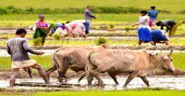 കാര്ഷികമേഖലയ്ക്ക് 2100 കോടി രൂപ വകയിരുത്തി