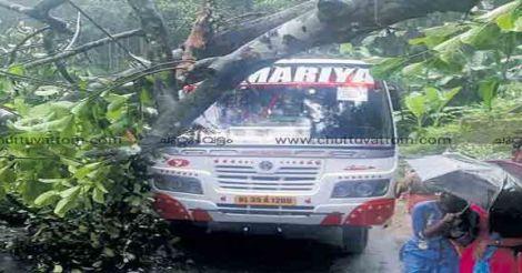 pathanamthitta-accident